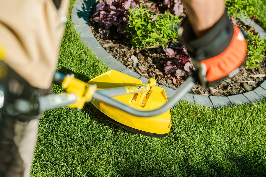 3 reasons to choose our lawn maintenance service